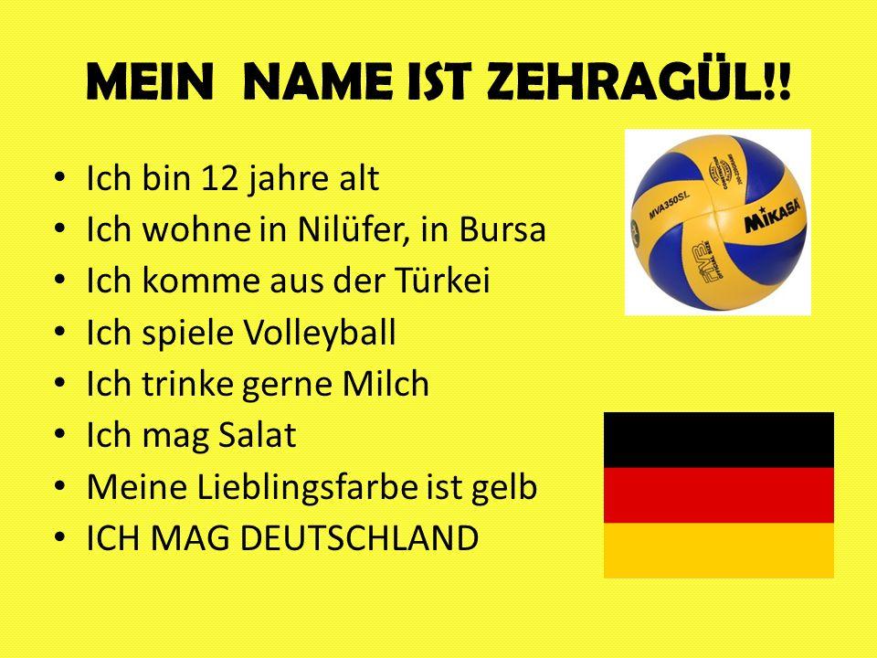 MEIN NAME IST ZEHRAGÜL!! Ich bin 12 jahre alt Ich wohne in Nilüfer, in Bursa Ich komme aus der Türkei Ich spiele Volleyball Ich trinke gerne Milch Ich