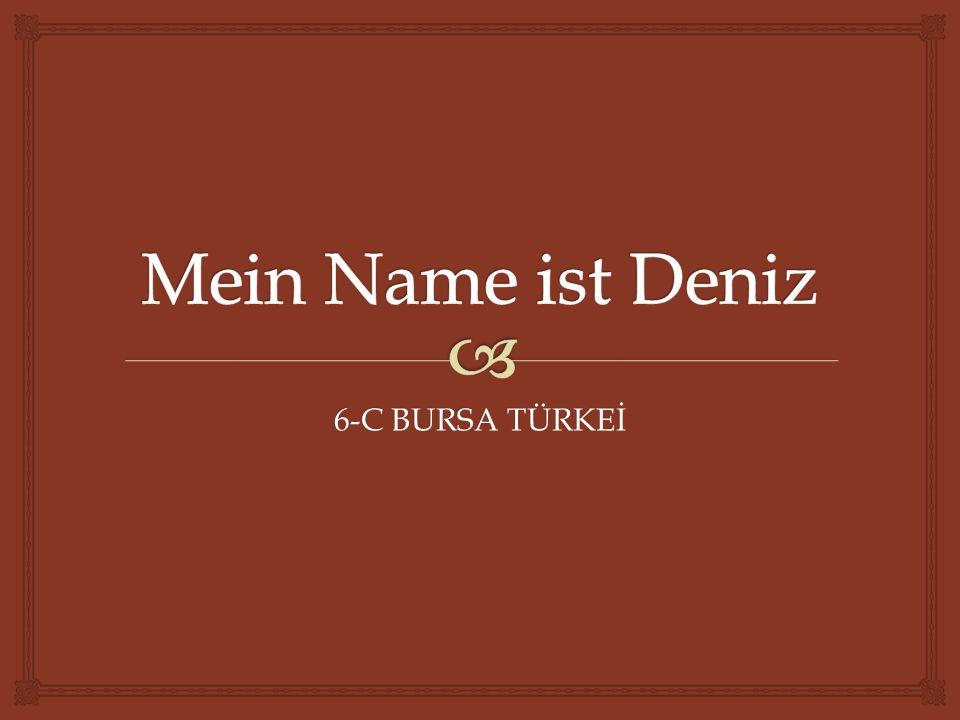 6-C BURSA TÜRKEİ