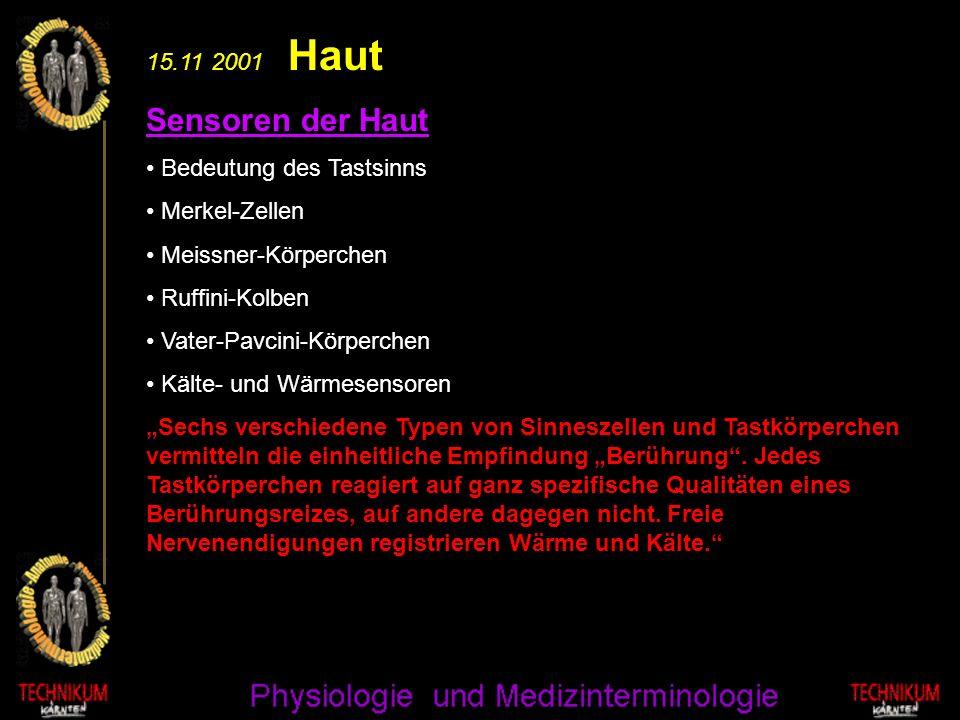 15.11 2001 Haut Sensoren der Haut Bedeutung des Tastsinns Merkel-Zellen Meissner-Körperchen Ruffini-Kolben Vater-Pavcini-Körperchen Kälte- und Wärmese