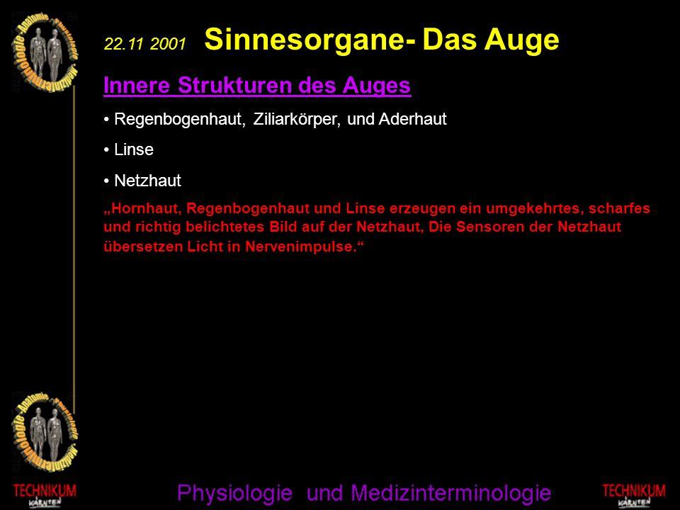 22.11 2001 Sinnesorgane- Das Auge Innere Strukturen des Auges Regenbogenhaut, Ziliarkörper, und Aderhaut Linse Netzhaut Hornhaut, Regenbogenhaut und L