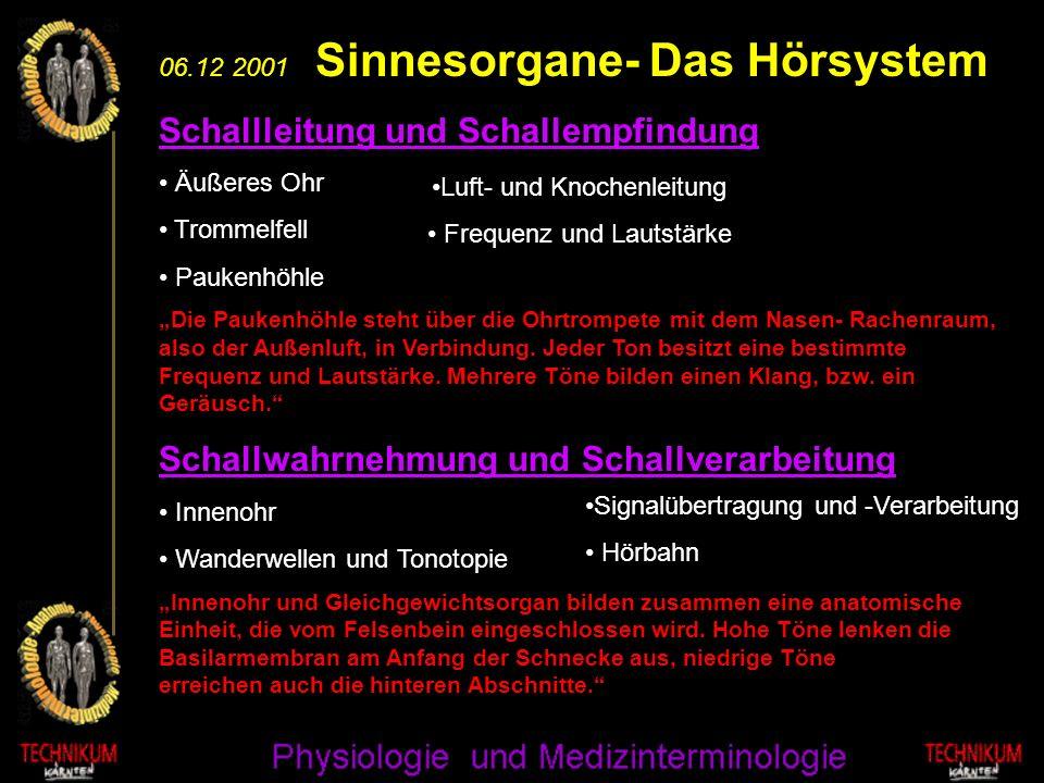 06.12 2001 Sinnesorgane- Das Hörsystem Schallleitung und Schallempfindung Äußeres Ohr Trommelfell Paukenhöhle Die Paukenhöhle steht über die Ohrtrompe