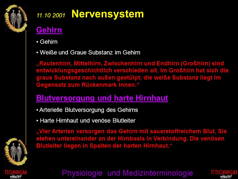 11.10 2001 Nervensystem Gehirn Weiße und Graue Substanz im Gehirn Rautenhirn, Mittelhirn, Zwischenhirn und Endhirn (Großhirn) sind entwicklungsgeschic