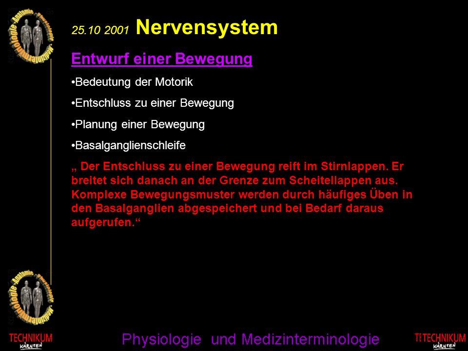 25.10 2001 Nervensystem Motorik II : Kleinhirn Kleinhirn Kleinhirnschleife Kontrolle von Bewegungen Neben den Basalganglien sorgt das Kleinhirn für einen flüssigen Bewegungsablauf und für das Gleichgewicht des Körpers.