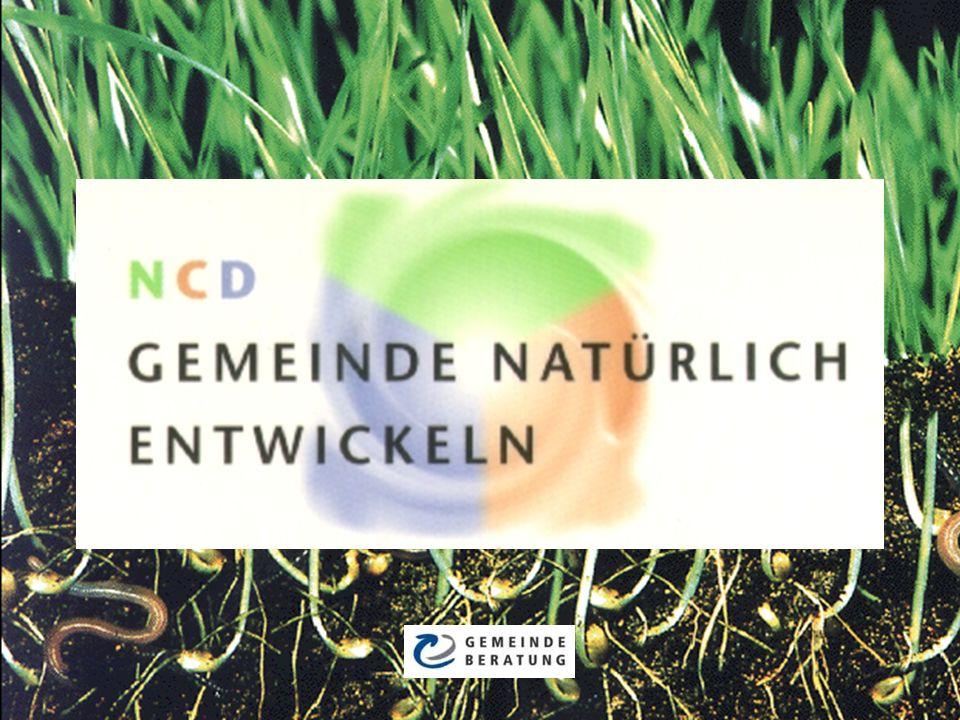 Was ist «Natürliche Gemeindeentwicklung?» Manche Gemeindewachstums- konzepte starren nur auf die Frucht, aber sehen nicht die Wurzeln, die diese Frucht produzieren.
