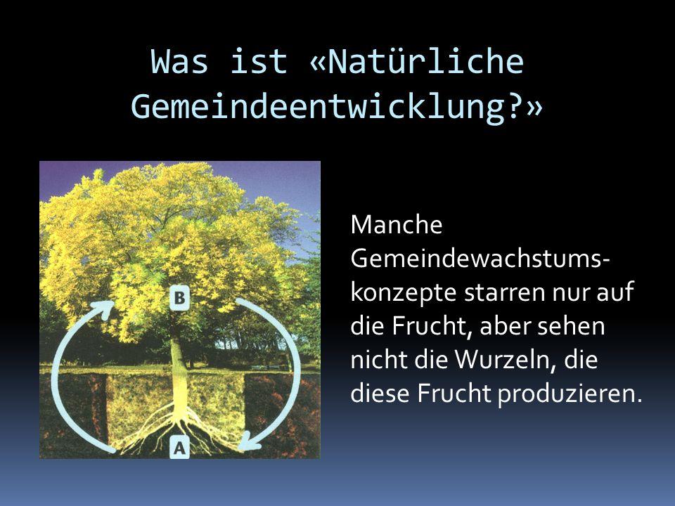 Was ist «Natürliche Gemeindeentwicklung?» Manche Gemeindewachstums- konzepte starren nur auf die Frucht, aber sehen nicht die Wurzeln, die diese Fruch