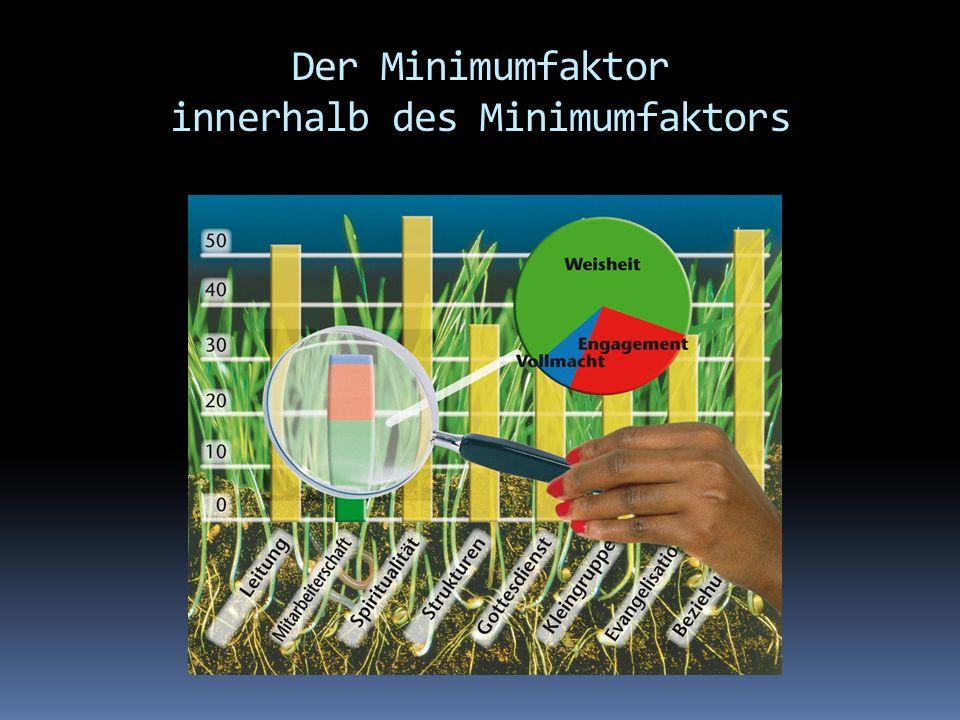 Der Minimumfaktor innerhalb des Minimumfaktors