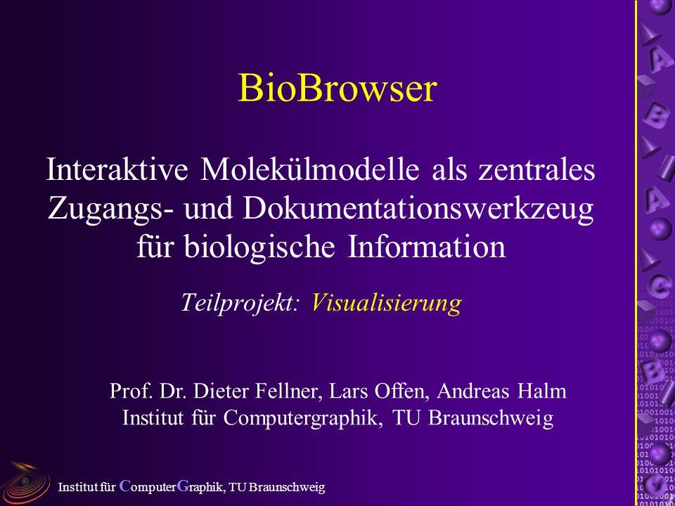 Institut für C omputer G raphik, TU Braunschweig BioBrowser Interaktive Molekülmodelle als zentrales Zugangs- und Dokumentationswerkzeug für biologische Information Teilprojekt: Visualisierung Prof.