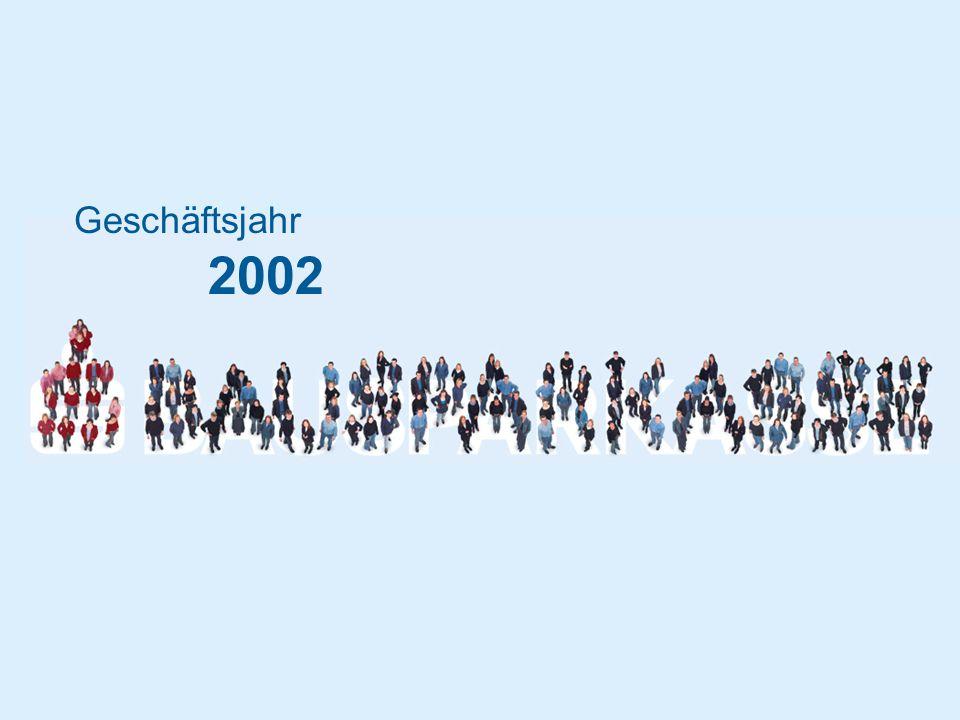 Geschäftsjahr 2002