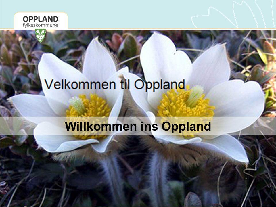 Bezirk Oppland Fläche: ca.25.000 km2 Einwohner: ca.