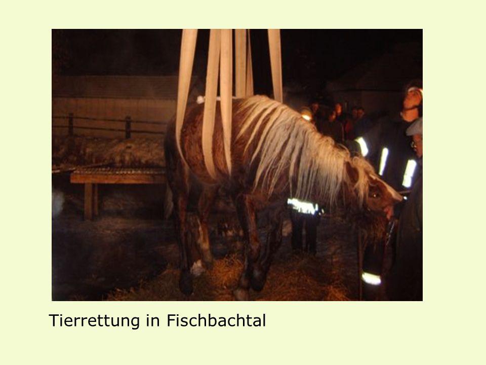 Tierrettung in Fischbachtal