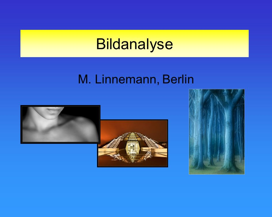 Bildanalyse M. Linnemann, Berlin