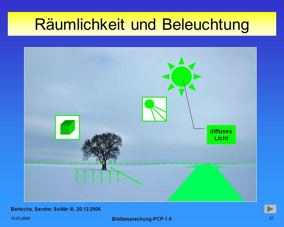 19.05.2004 Bildbesprechung-PCP-1.0 17 Räumlichkeit und Beleuchtung Bartocha, Sandra: Solitär III, 20.12.2006 diffuses Licht