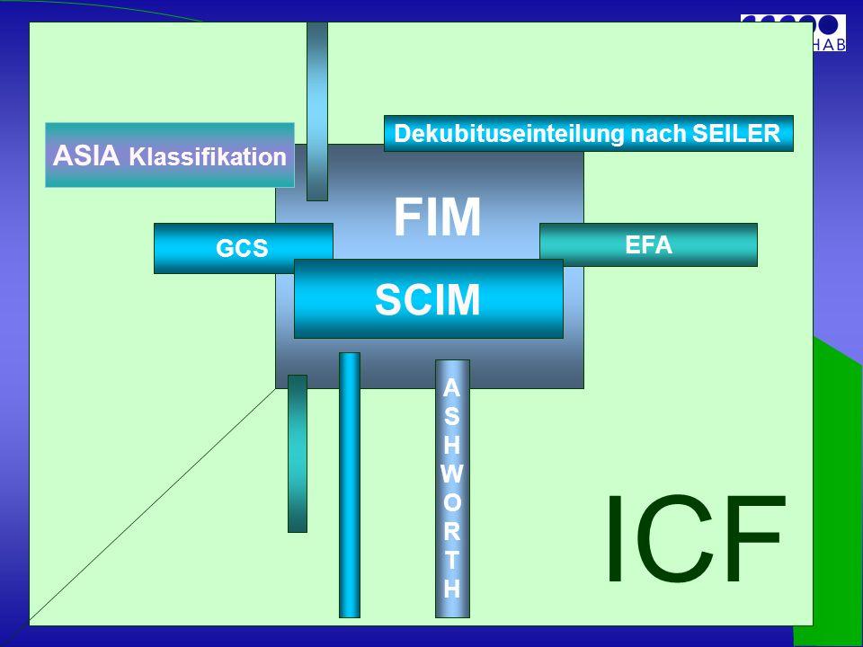 EFA Dekubituseinteilung nach SEILER GCS ASHWORTHASHWORTH SCIM FIM ASIA Klassifikation ICF