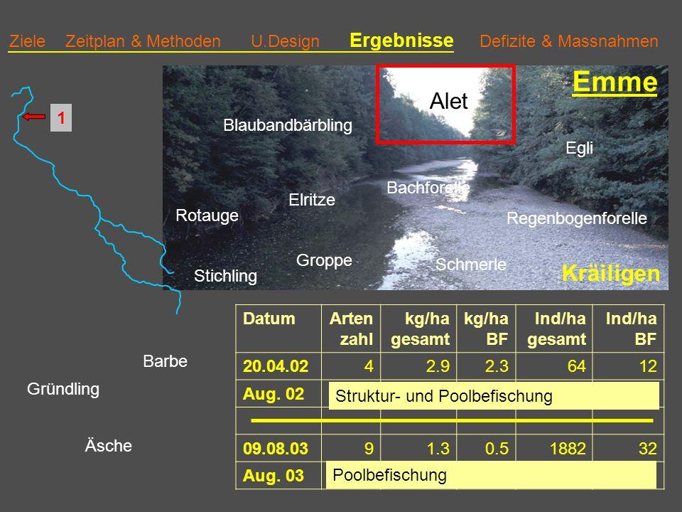 Ziele Zeitplan & Methoden U.Design Ergebnisse Defizite & Massnahmen Emme DatumArten zahl kg/ha gesamt kg/ha BF Ind/ha gesamt Ind/ha BF 20.04.0242.92.36412 Aug.