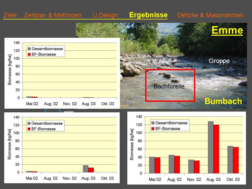 Ziele Zeitplan & Methoden U.Design Ergebnisse Defizite & Massnahmen Emme Bumbach Bachforelle Groppe 3 Biomasse