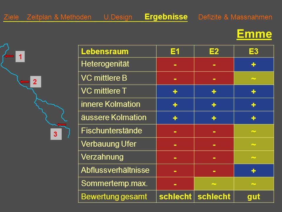 Ziele Zeitplan & Methoden U.Design Ergebnisse Defizite & Massnahmen Emme LebensraumE1E2E3 Heterogenität --+ VC mittlere B --~ VC mittlere T +++ innere Kolmation +++ äussere Kolmation +++ Fischunterstände --~ Verbauung Ufer --~ Verzahnung --~ Abflussverhältnisse --+ Sommertemp.max.
