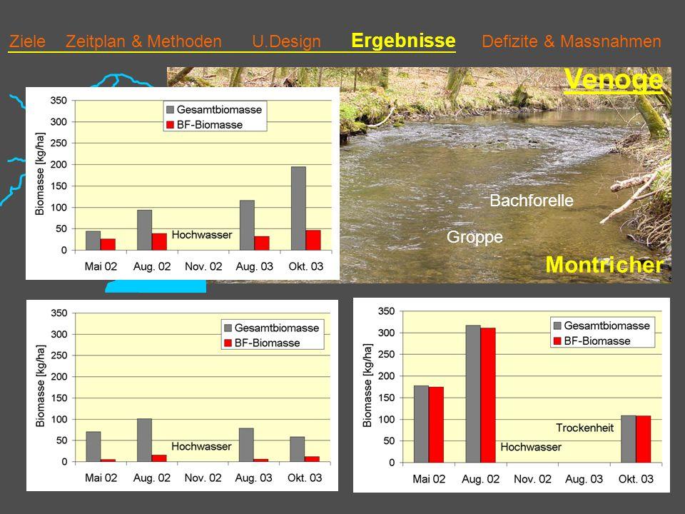 Ziele Zeitplan & Methoden U.Design Ergebnisse Defizite & Massnahmen Venoge Montricher Bachforelle Groppe 3 Biomasse