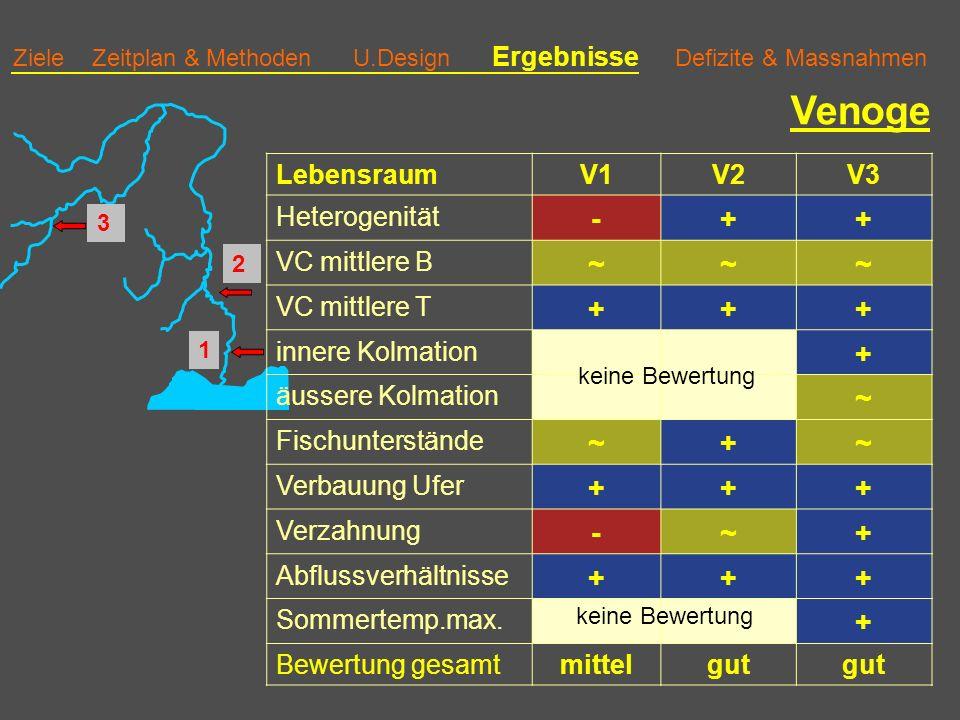 Ziele Zeitplan & Methoden U.Design Ergebnisse Defizite & Massnahmen Venoge LebensraumV1V2V3 Heterogenität -++ VC mittlere B ~~~ VC mittlere T +++ innere Kolmation + äussere Kolmation ~ Fischunterstände ~+~ Verbauung Ufer +++ Verzahnung -~+ Abflussverhältnisse +++ Sommertemp.max.