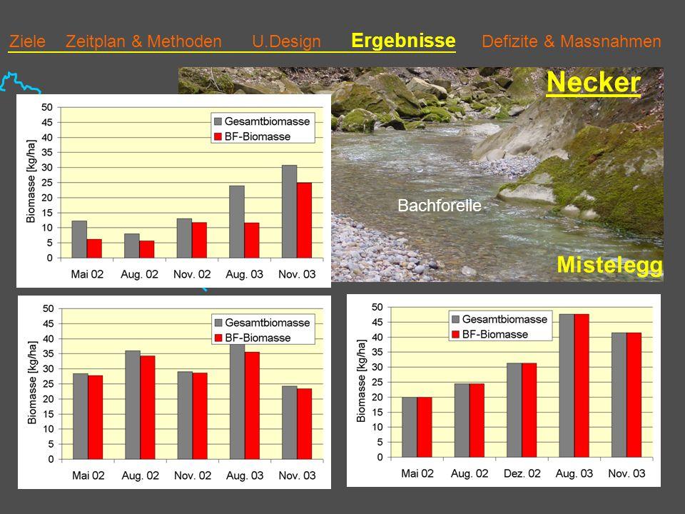 Ziele Zeitplan & Methoden U.Design Ergebnisse Defizite & Massnahmen Necker Mistelegg Bachforelle 3 Biomasse