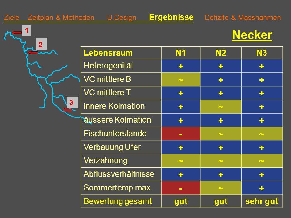 Ziele Zeitplan & Methoden U.Design Ergebnisse Defizite & Massnahmen Necker LebensraumN1N2N3 Heterogenität +++ VC mittlere B ~++ VC mittlere T +++ innere Kolmation +~+ äussere Kolmation +++ Fischunterstände -~~ Verbauung Ufer +++ Verzahnung ~~~ Abflussverhältnisse +++ Sommertemp.max.