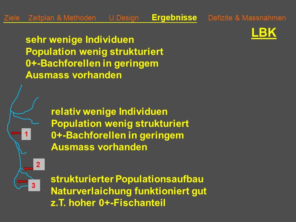 Ziele Zeitplan & Methoden U.Design Ergebnisse Defizite & Massnahmen LBK strukturierter Populationsaufbau Naturverlaichung funktioniert gut z.T.