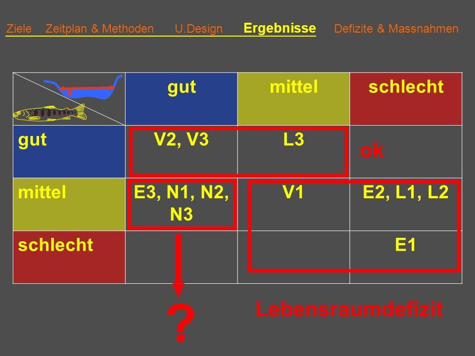 Ziele Zeitplan & Methoden U.Design Ergebnisse Defizite & Massnahmen gutmittelschlecht gutV2, V3L3 mittelE3, N1, N2, N3 V1E2, L1, L2 schlechtE1 ok Lebensraumdefizit ?