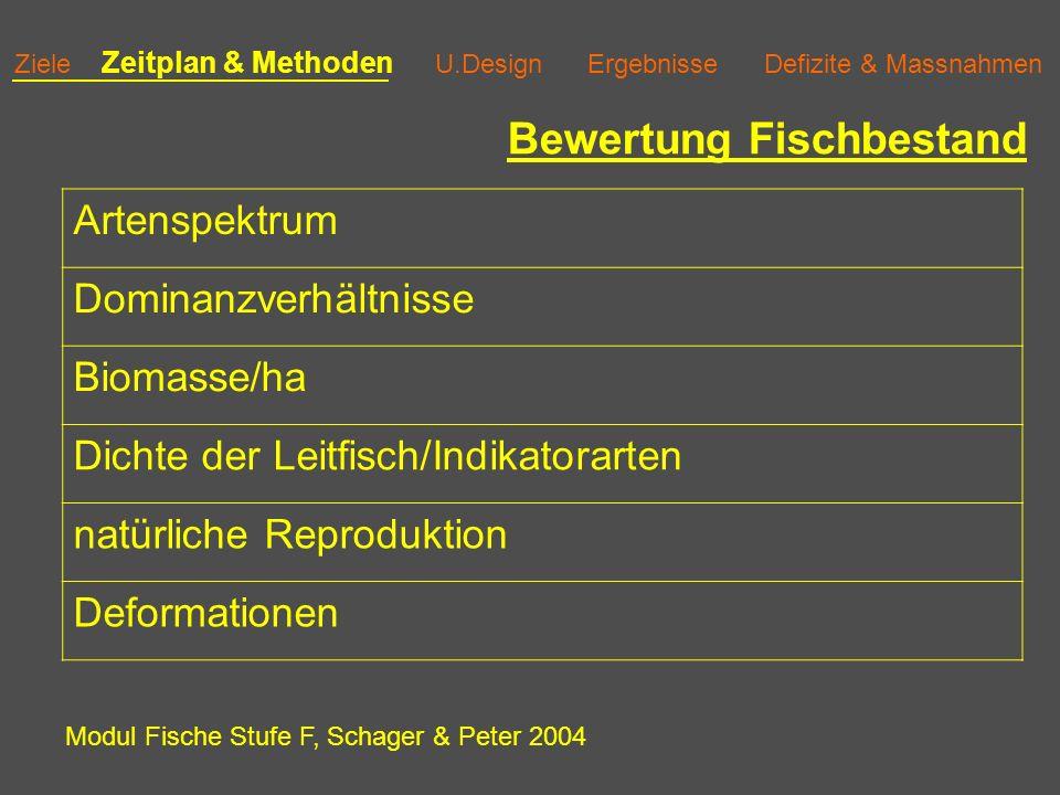 Ziele Zeitplan & Methoden U.Design Ergebnisse Defizite & Massnahmen Bewertung Fischbestand Artenspektrum Dominanzverhältnisse Biomasse/ha Dichte der Leitfisch/Indikatorarten natürliche Reproduktion Deformationen Modul Fische Stufe F, Schager & Peter 2004