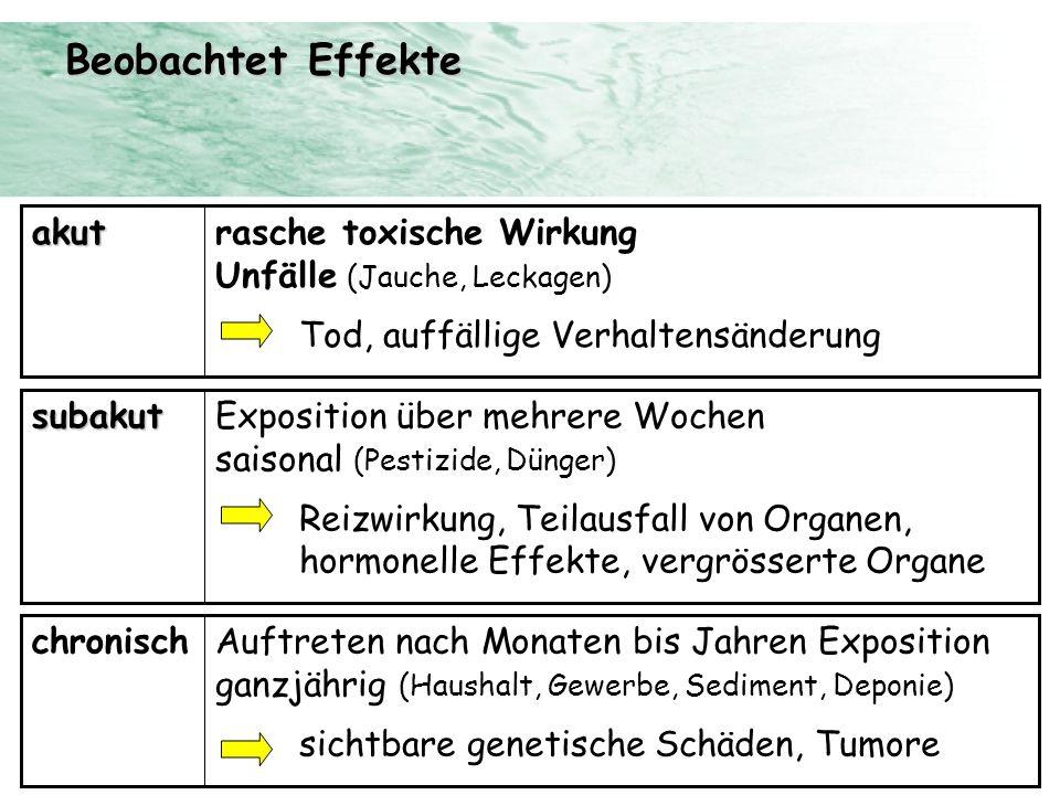 rasche toxische Wirkung Unfälle (Jauche, Leckagen) Tod, auffällige Verhaltensänderungakut Exposition über mehrere Wochen saisonal (Pestizide, Dünger)