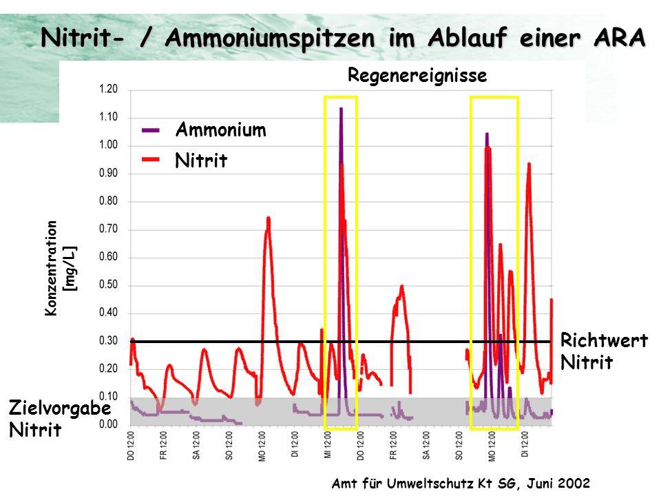 Nitrit- / Ammoniumspitzen im Ablauf einer ARA Ammonium Konzentration [mg/L] Amt für Umweltschutz Kt SG, Juni 2002 Ammonium Nitrit Richtwert Nitrit Zie