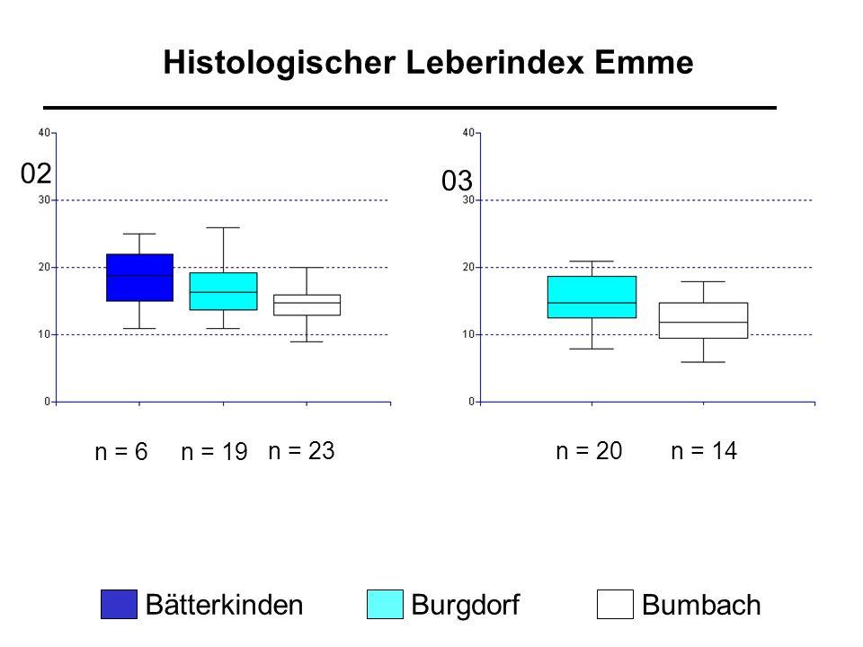 n = 20n = 14 Histologischer Leberindex Emme n = 6n = 19 n = 23 BätterkindenBurgdorf Bumbach 02 03