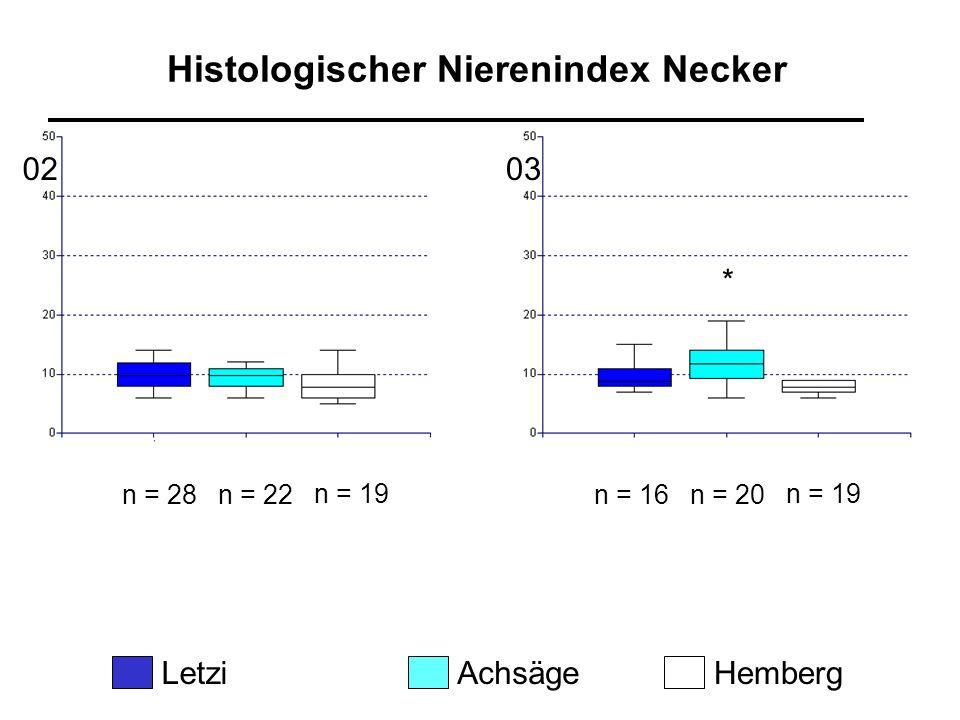 Histologischer Nierenindex Necker LetziAchsägeHemberg 0203 n = 28n = 22 n = 19 n = 16n = 20 n = 19 *