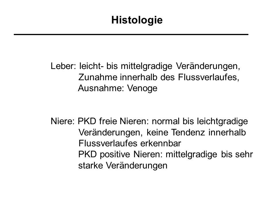 Histologie Leber: leicht- bis mittelgradige Veränderungen, Zunahme innerhalb des Flussverlaufes, Ausnahme: Venoge Niere: PKD freie Nieren: normal bis