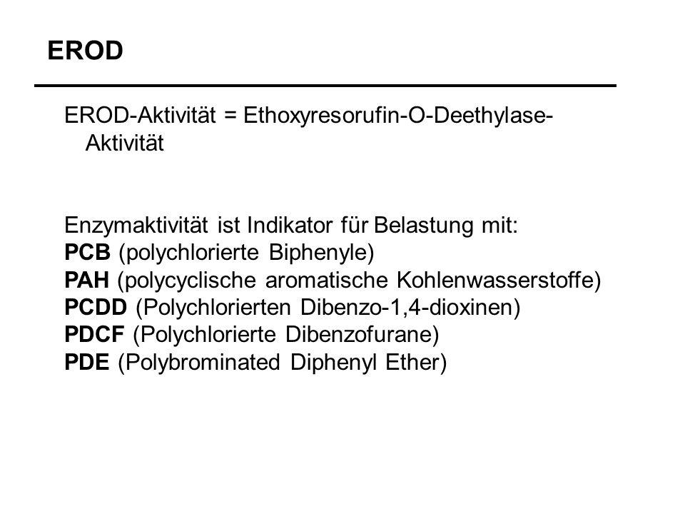 EROD-Aktivität = Ethoxyresorufin-O-Deethylase- Aktivität Enzymaktivität ist Indikator für Belastung mit: PCB (polychlorierte Biphenyle) PAH (polycycli