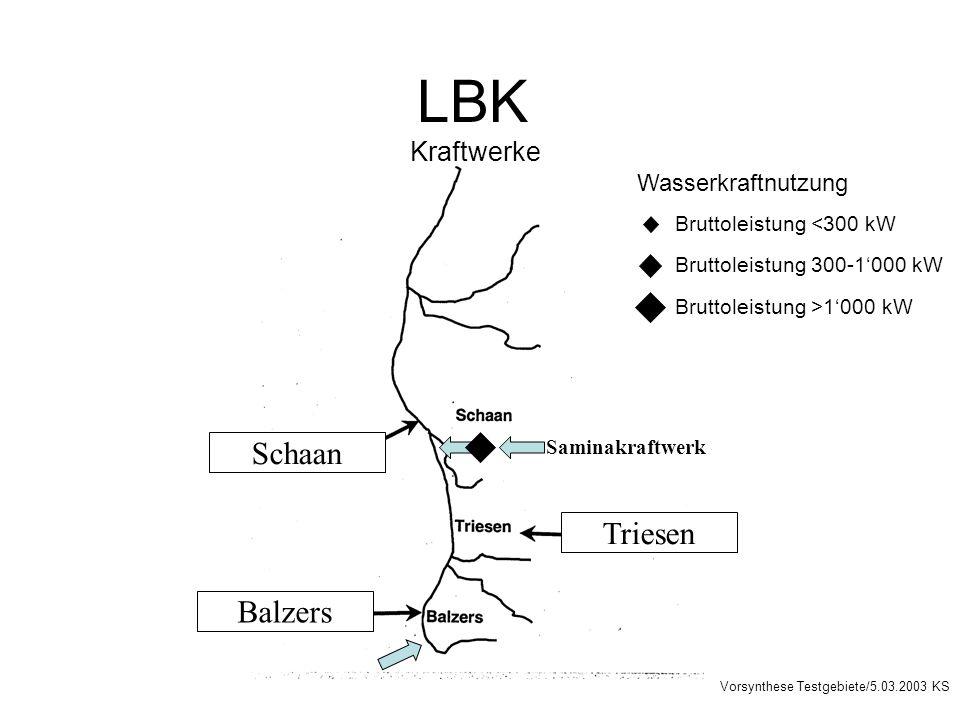 Triesen Schaan Balzers Wasserkraftnutzung Bruttoleistung <300 kW Bruttoleistung 300-1000 kW Bruttoleistung >1000 kW Saminakraftwerk Vorsynthese Testgebiete/5.03.2003 KS LBK Kraftwerke