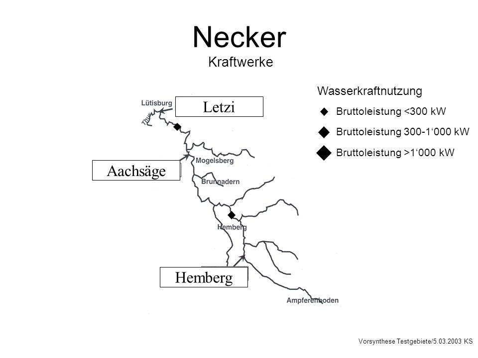 Necker Kraftwerke Letzi Aachsäge Hemberg Wasserkraftnutzung Bruttoleistung <300 kW Bruttoleistung 300-1000 kW Bruttoleistung >1000 kW Vorsynthese Testgebiete/5.03.2003 KS