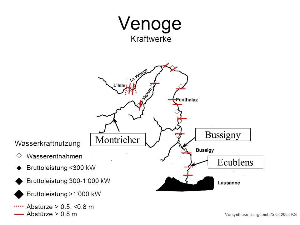 Venoge Kraftwerke Bussigny Montricher Ecublens Wasserkraftnutzung Bruttoleistung <300 kW Bruttoleistung 300-1000 kW Bruttoleistung >1000 kW Abstürze > 0.5, <0.8 m Abstürze > 0.8 m Wasserentnahmen Vorsynthese Testgebiete/5.03.2003 KS