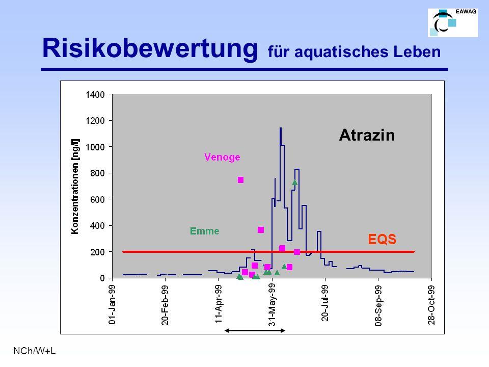 Risikobewertung für aquatisches Leben NCh/W+L Atrazin EQS
