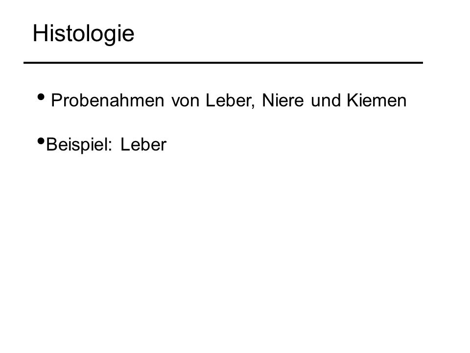 Histologie Probenahmen von Leber, Niere und Kiemen Beispiel: Leber