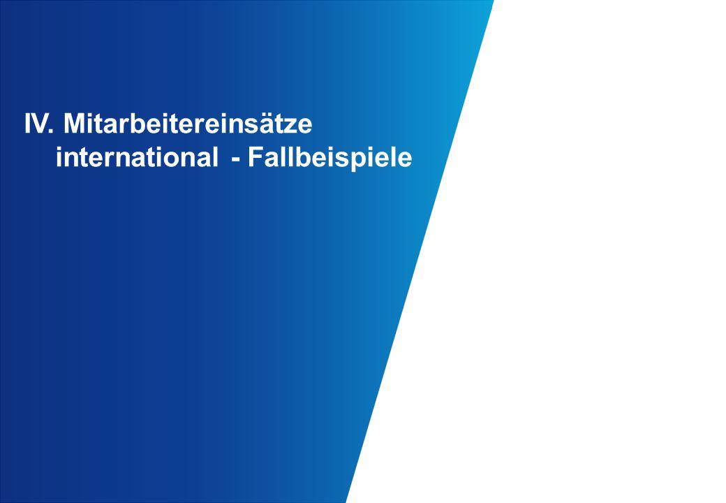 IV. Mitarbeitereinsätze international - Fallbeispiele