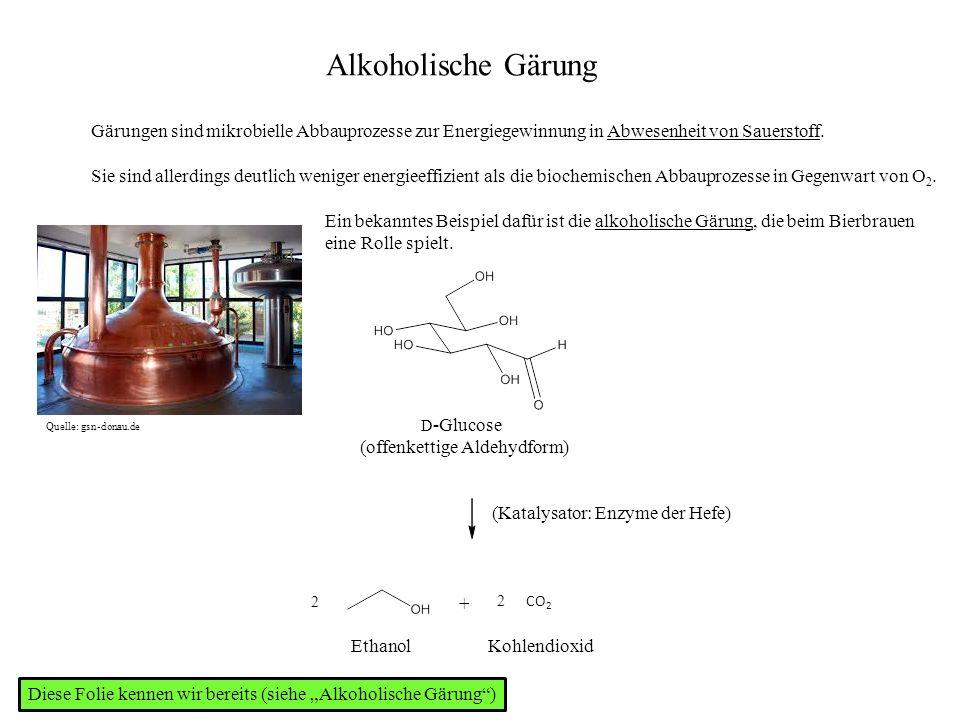 Alkoholische Gärung D -Glucose (offenkettige Aldehydform) 2 + 2 CO 2 Ethanol (Katalysator: Enzyme der Hefe) Kohlendioxid Quelle: gsn-donau.de Gärungen sind mikrobielle Abbauprozesse zur Energiegewinnung in Abwesenheit von Sauerstoff.