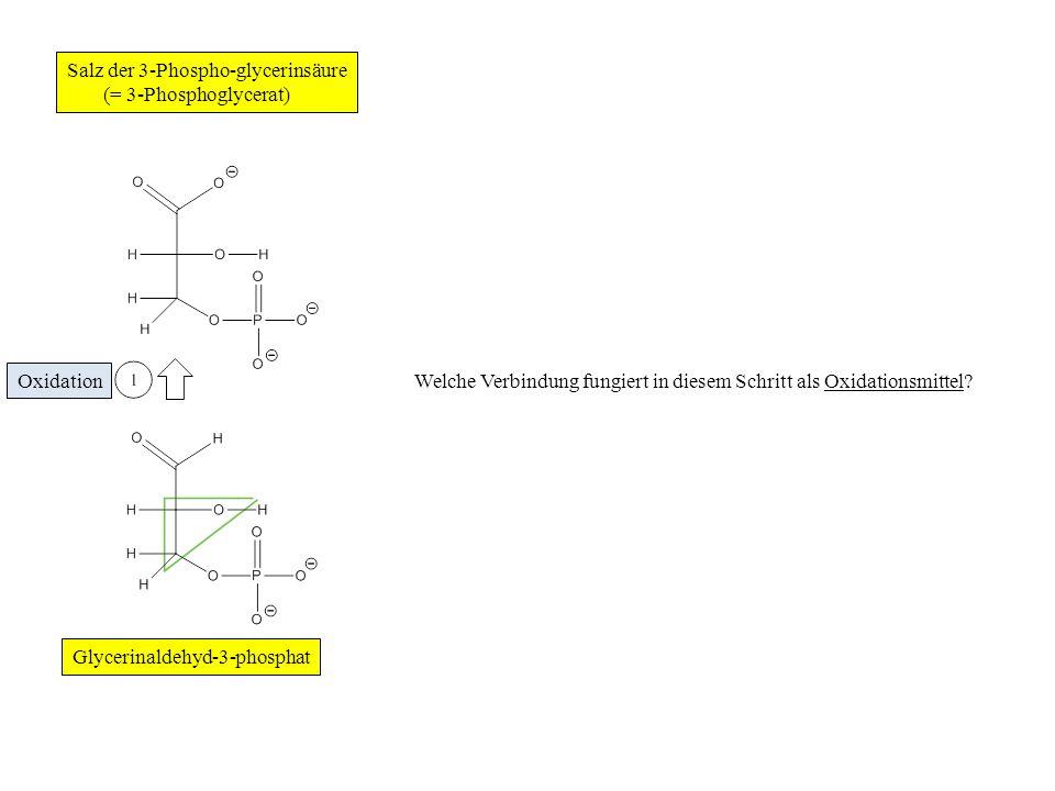 Zur Verdeutlichung des Redoxprozesses geben wir eines der H-Atome am aromatischen Ring gesondert wieder, nämlich das H-Atom am C-Atom Nr.