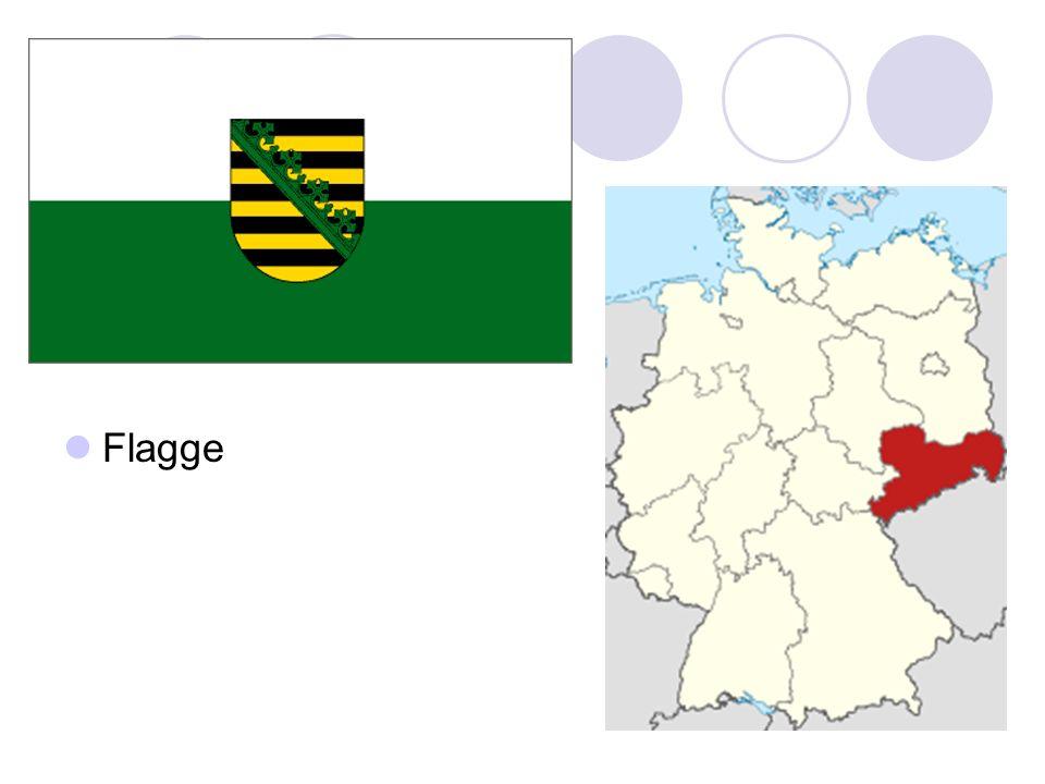 In Sachsen gibt es 79 Krankenhäuser mit ca.26.300 Krankenhausbetten.