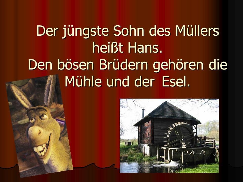 Der jüngste Sohn des Müllers heißt Hans. Den bösen Brüdern gehören die Mühle und der Esel.