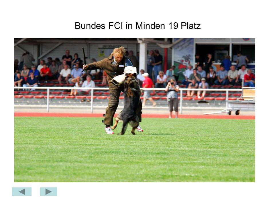 Bundes FCI in Minden 19 Platz