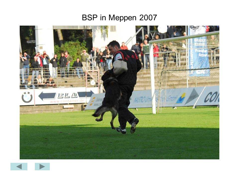 BSP in Meppen 2007