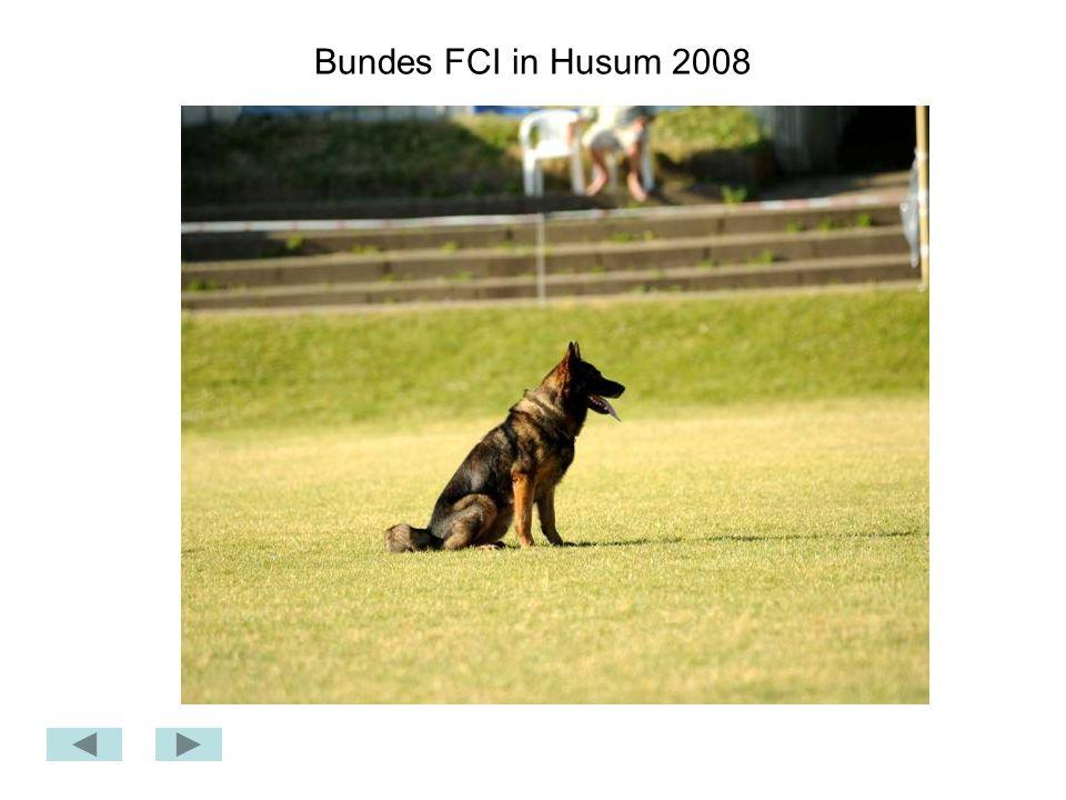 Bundes FCI in Husum 2008