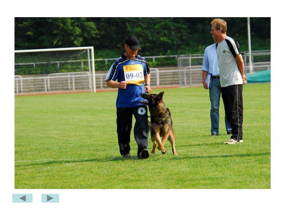 Bundes FCI Minden 2007
