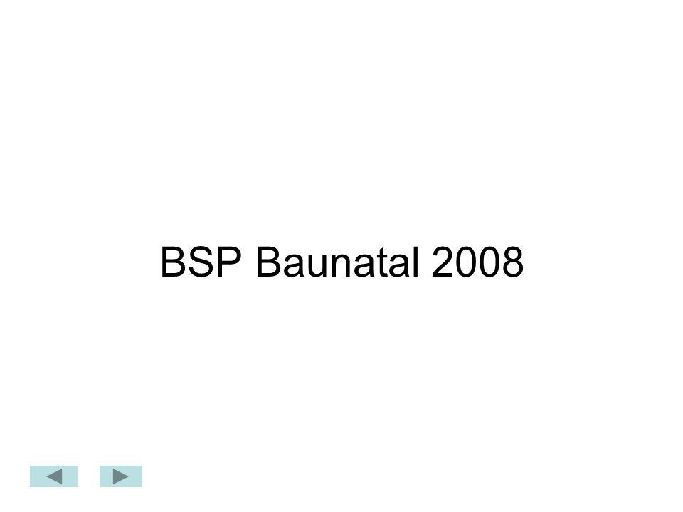 BSP Baunatal 2008