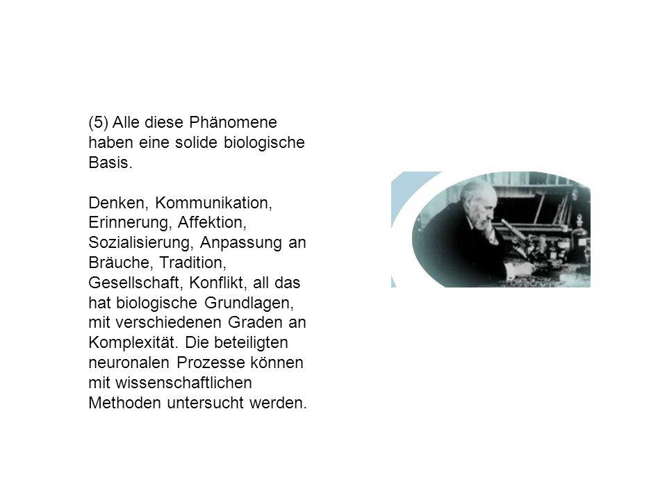 (5) Alle diese Phänomene haben eine solide biologische Basis.