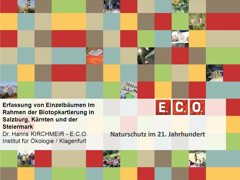 www.e-c-o.at 8.4 Einzelbäume und -sträucher, Baumreihen und Alleen, Baumbestände (Basierend auf UBA-Katalog) 8.4.1 Einzelbäume und -sträucher BT 8.4.1.1 Obstbaum BT 8.4.1.2 Laubbaum BT 8.4.1.3 Nadelbaum BT 8.4.1.4 Einzelbusch und Strauchgruppe BT 8.4.1.5 Kopfbaum 8.4.2 Baumreihen und Alleen BT 8.4.2.1 Obstbaumreihe und -allee BT 8.4.2.2 Laubbaumreihe und -allee BT 8.4.2.3 Nadelbaumreihe und -allee BT 8.4.2.4 Kopfbaumreihe und -allee 8.4.3 Baumbestände in Parks und Gärten BT 8.4.3.1 Altbaumbestand in Park und Garten BT 8.4.3.2 Junger Baumbestand in Park und Garten 8.4.4 Kopfbaumbestände BT 8.4.4.1 Kopfbaumbestand